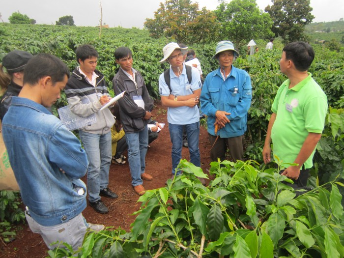 Smallholder coffee farmers in Lam Dong, Vietnam, attend a Farmer Field School session to learn about these techniques to adapt to climate change.