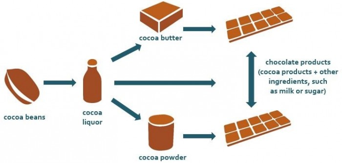 Diagram visualizing cocoa processing from bean to bar