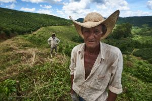 Fazenda Porto Alegre - UTZ certified since 2006 - In the picture worker Paulo Roberto da Silva.