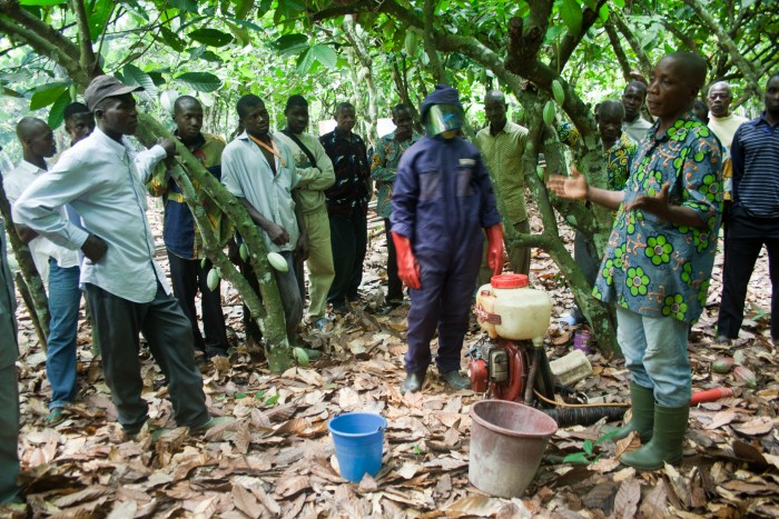 Cocoa farmers in Cote d'Ivoire receive training on how to safely apply pesticides