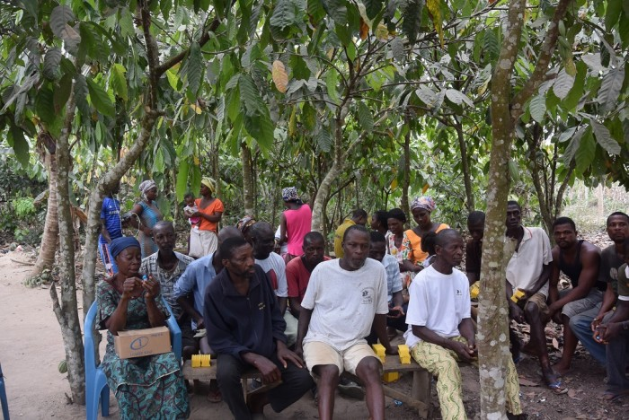 A farmer field school training session for UTZ cocoa farmers in Ghana