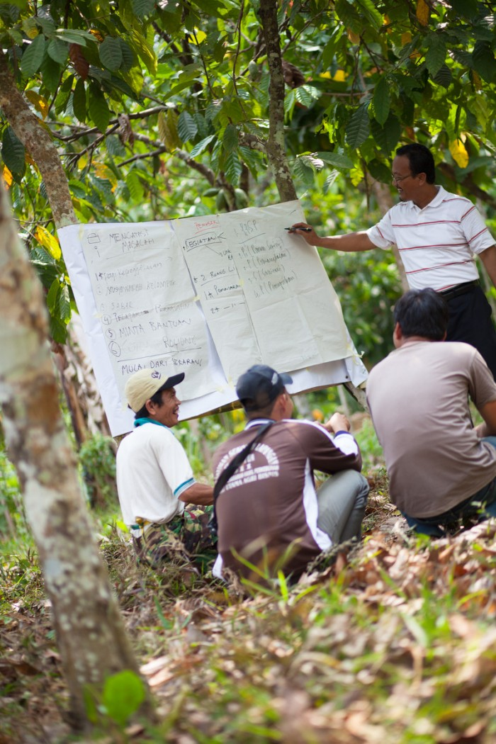 UTZ cocoa farmers joining a training session in a in farmer field school Indonesia © OLAM