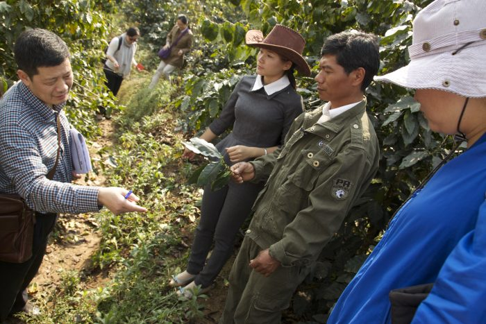 UTZ audit on a coffee farm in China