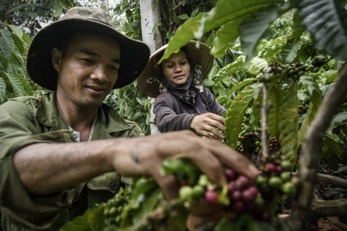 HÕ Dloe Nie and YÕ Nham Mlo, coffee farmers, Coffee Climate Care project, Vietnam. Photographer Kadir van Lohuizen / NOOR