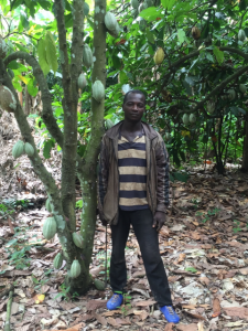 Mr Amany, UTZ certified cocoa farmer in Côte d'Ivoire